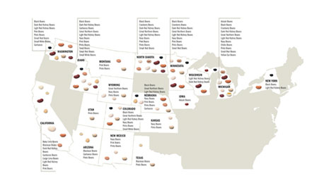 US Dry Beans Suppliers Map