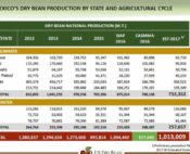 Mexico dry bean production by state, source: CASSMA consulting