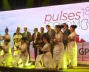 Global Pulse Confederation Convention