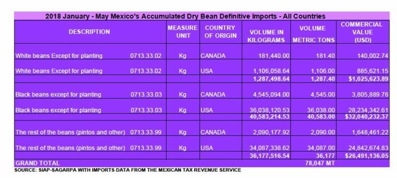 Bean Imports Mexico