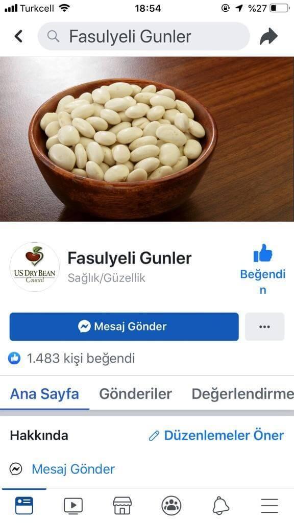 Turkey Uses Social Media
